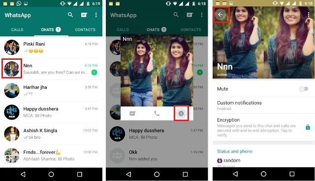 Online Hide WhatsApp