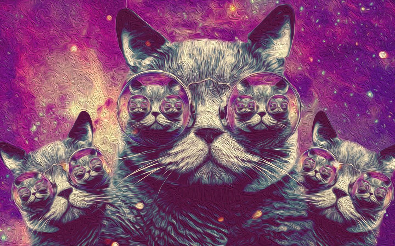 Trippy Wallpaper Cat