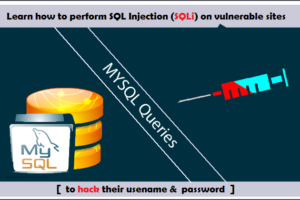 How To Perform SQL Injection