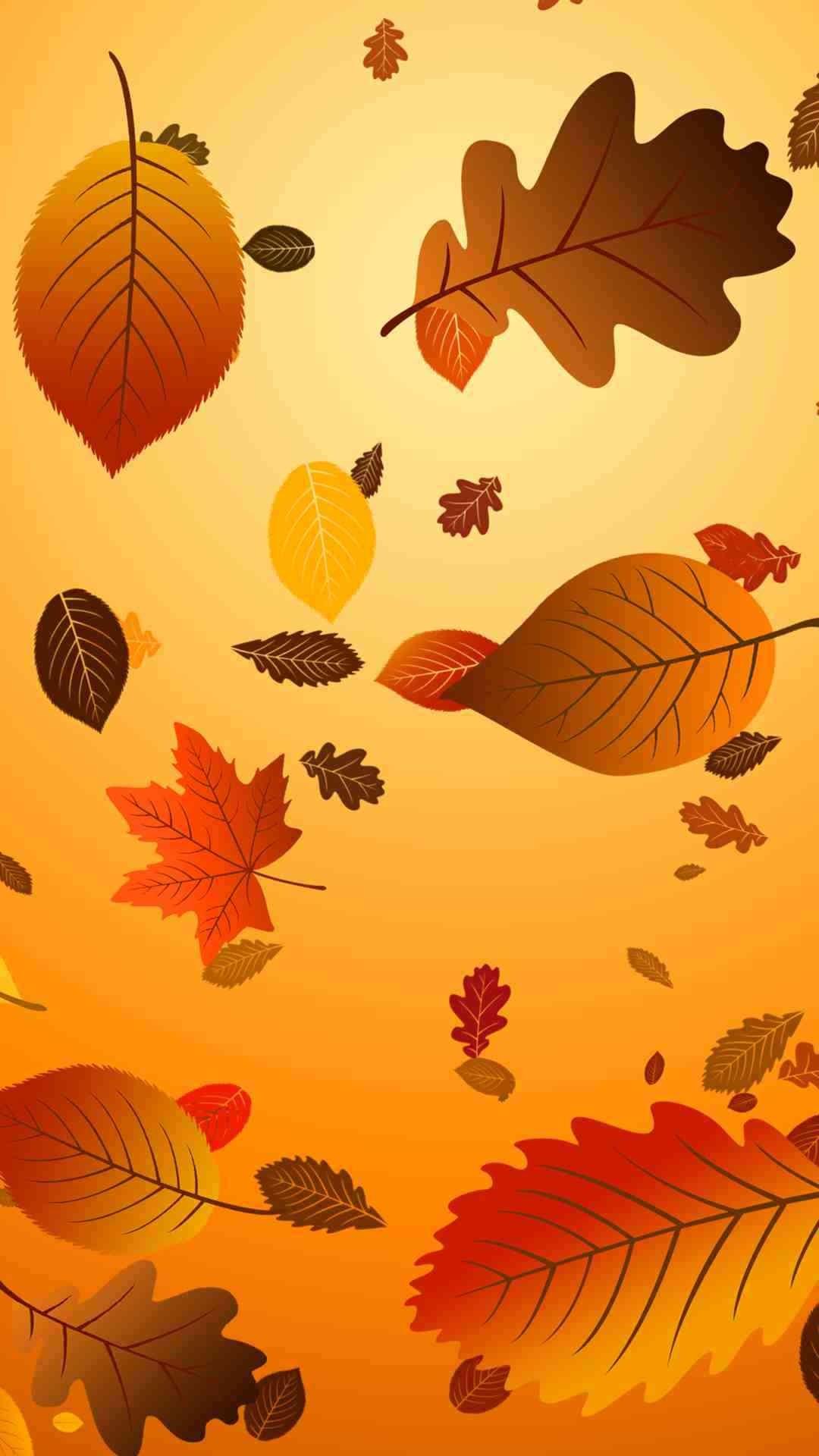 Thanksgiving iPhone Wallpaper - Supportive Guru