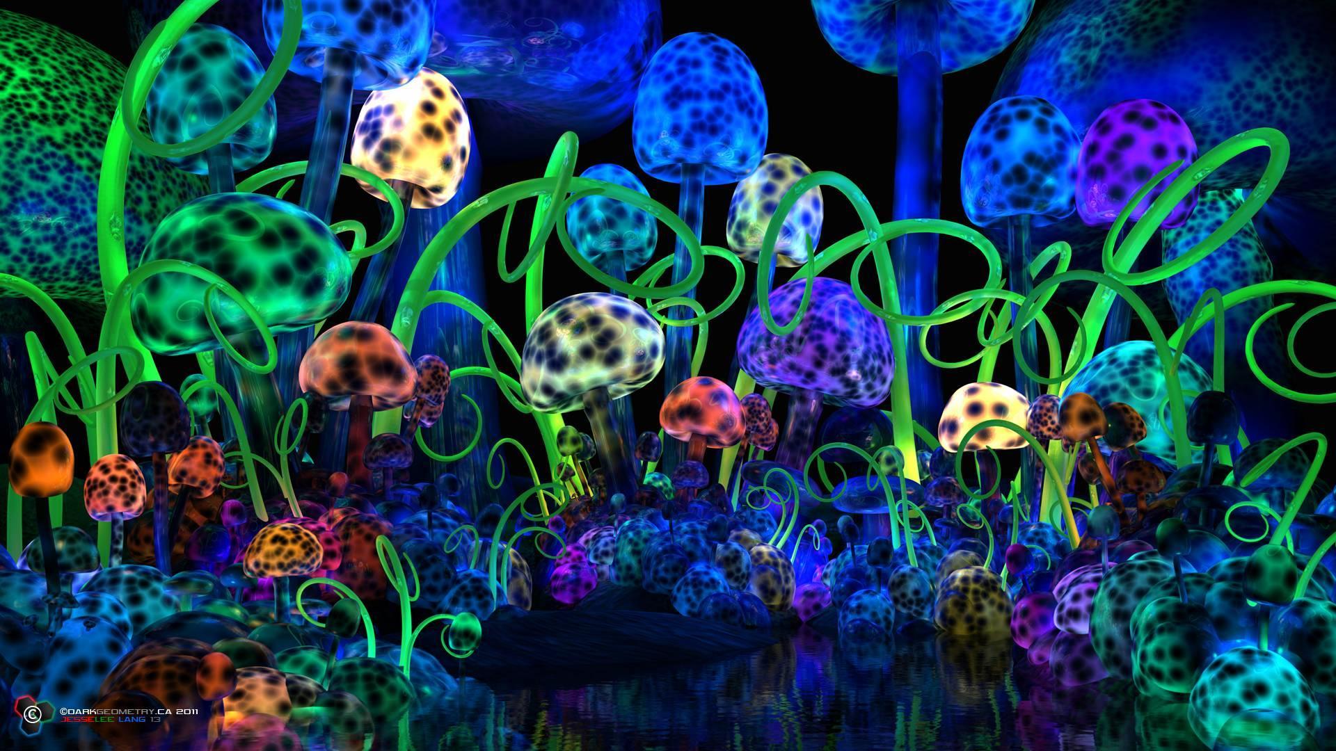 Trippy Wallpaper Mushroom
