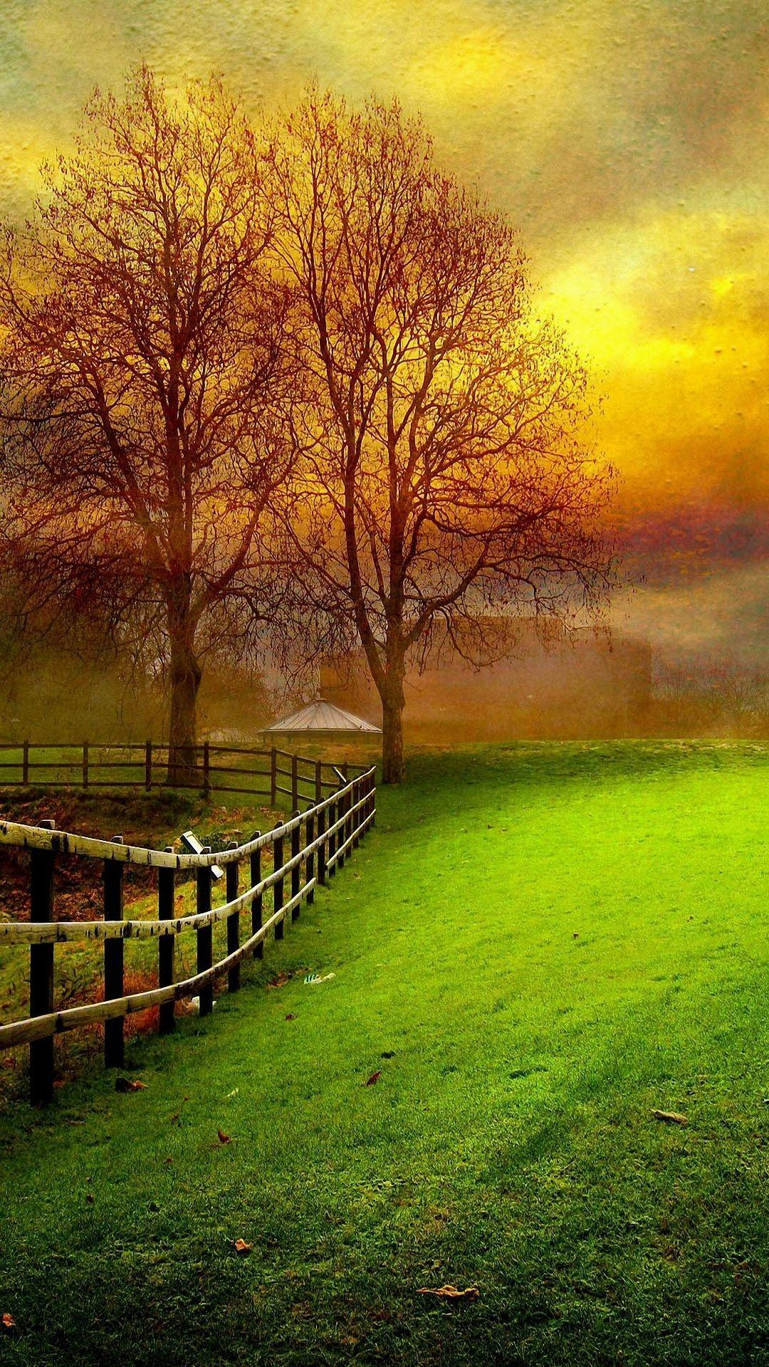 Beautiful Nature Wallpaper For Mobile Best Nature ...