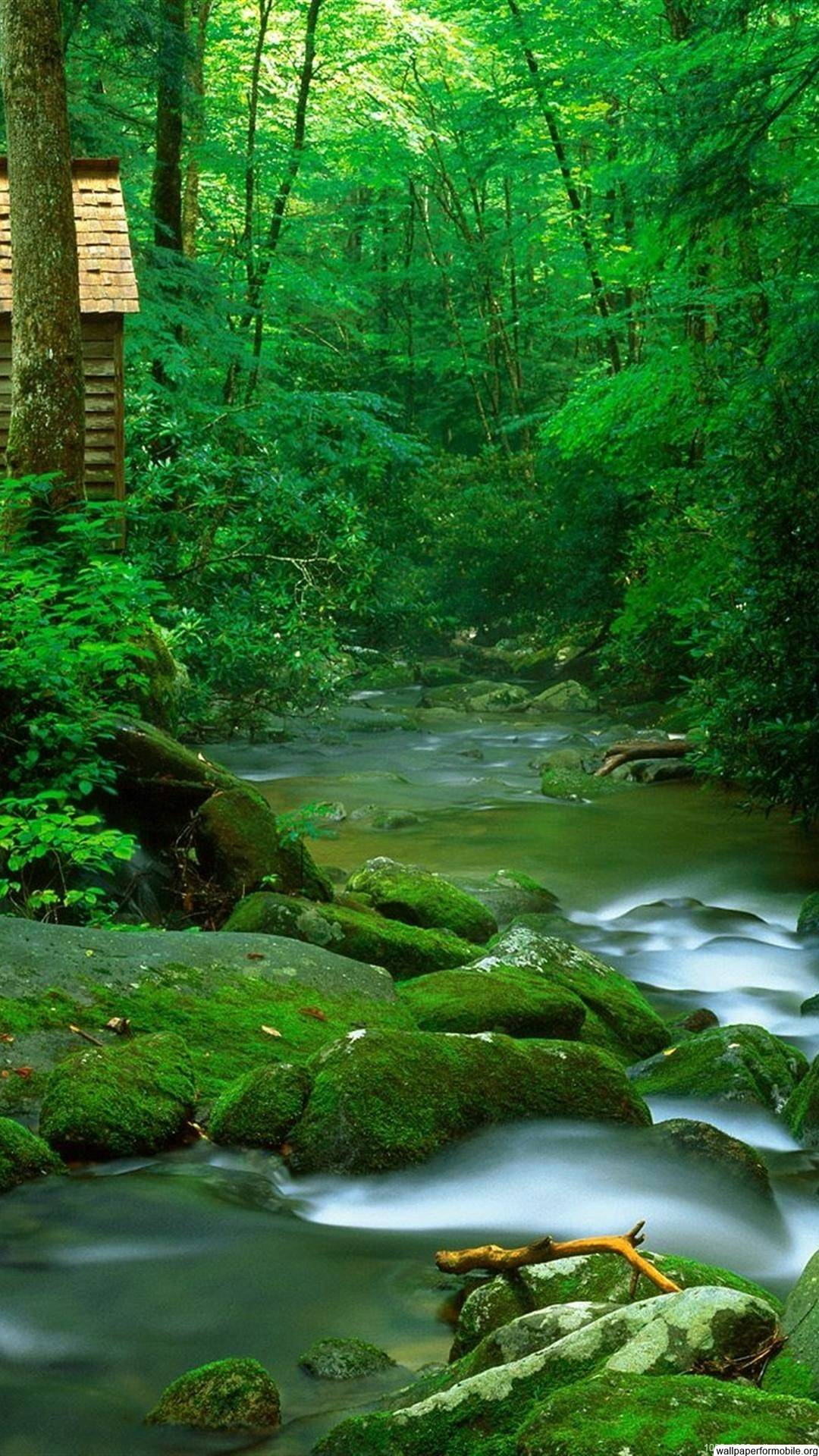 Nature Wallpaper free download hd nature wallpapers for ...